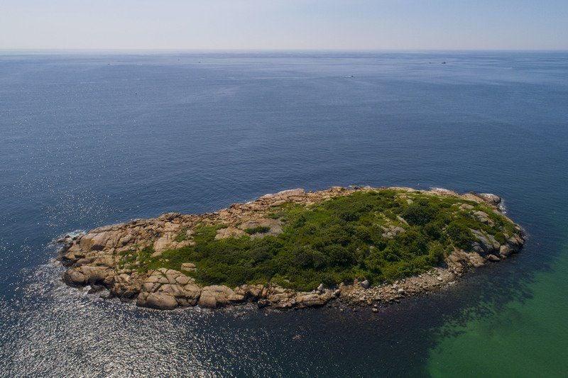 Coalition aims to buy Salt Island