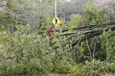 Power outages, felled trees plague Cape Ann towns