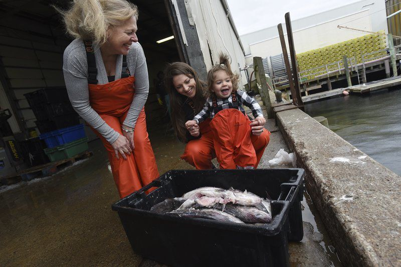 Lured to Gloucester: Virginia business comes to buy haddock after expo visit