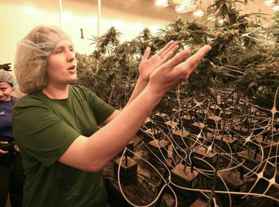Column: On Prohibition's 100th anniversary, do we expect the same fate for marijuana?