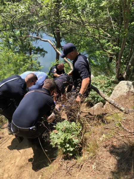 Man seriously hurt in fall at Vernon's Pit