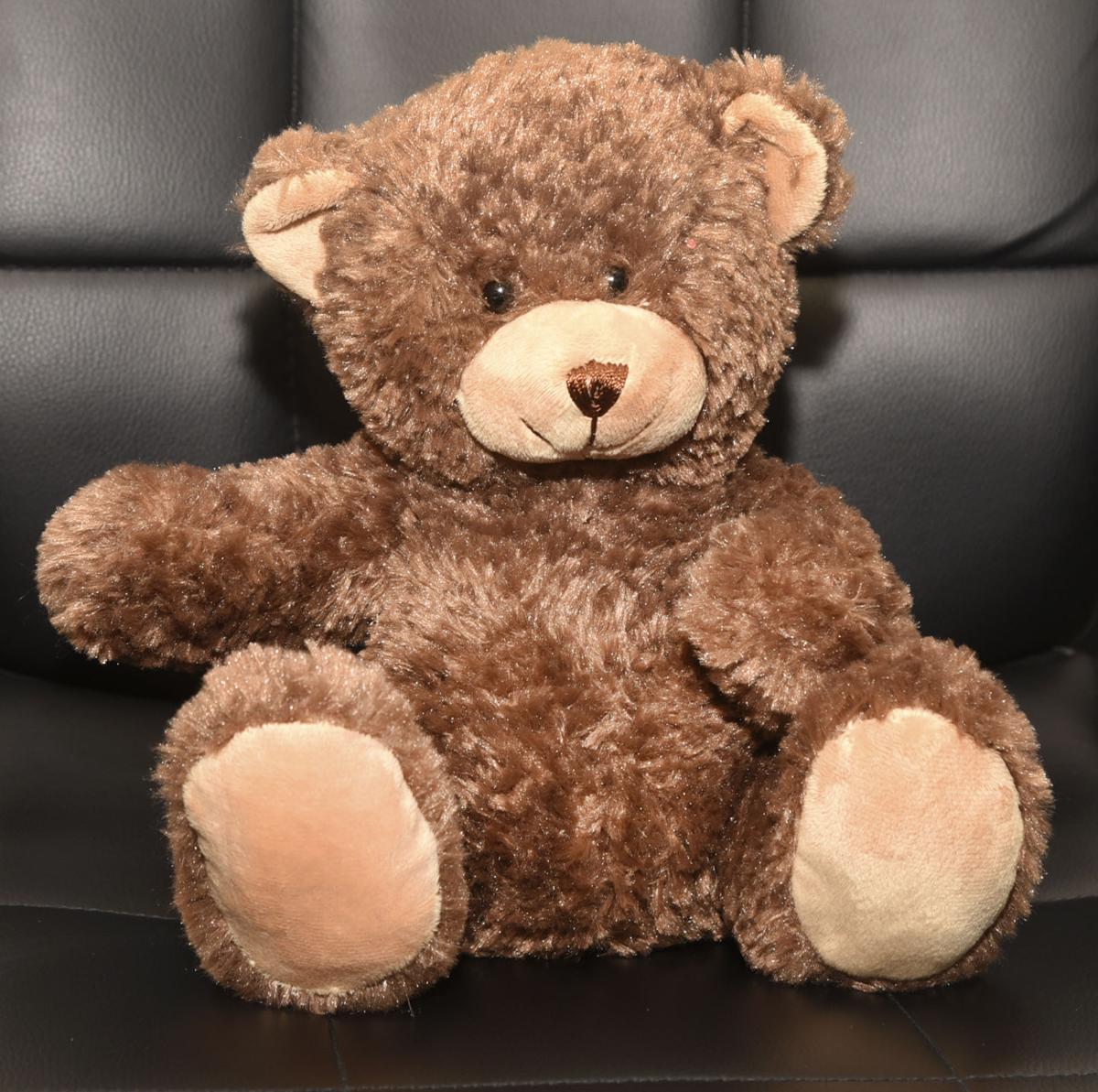011117_teddy bear 2