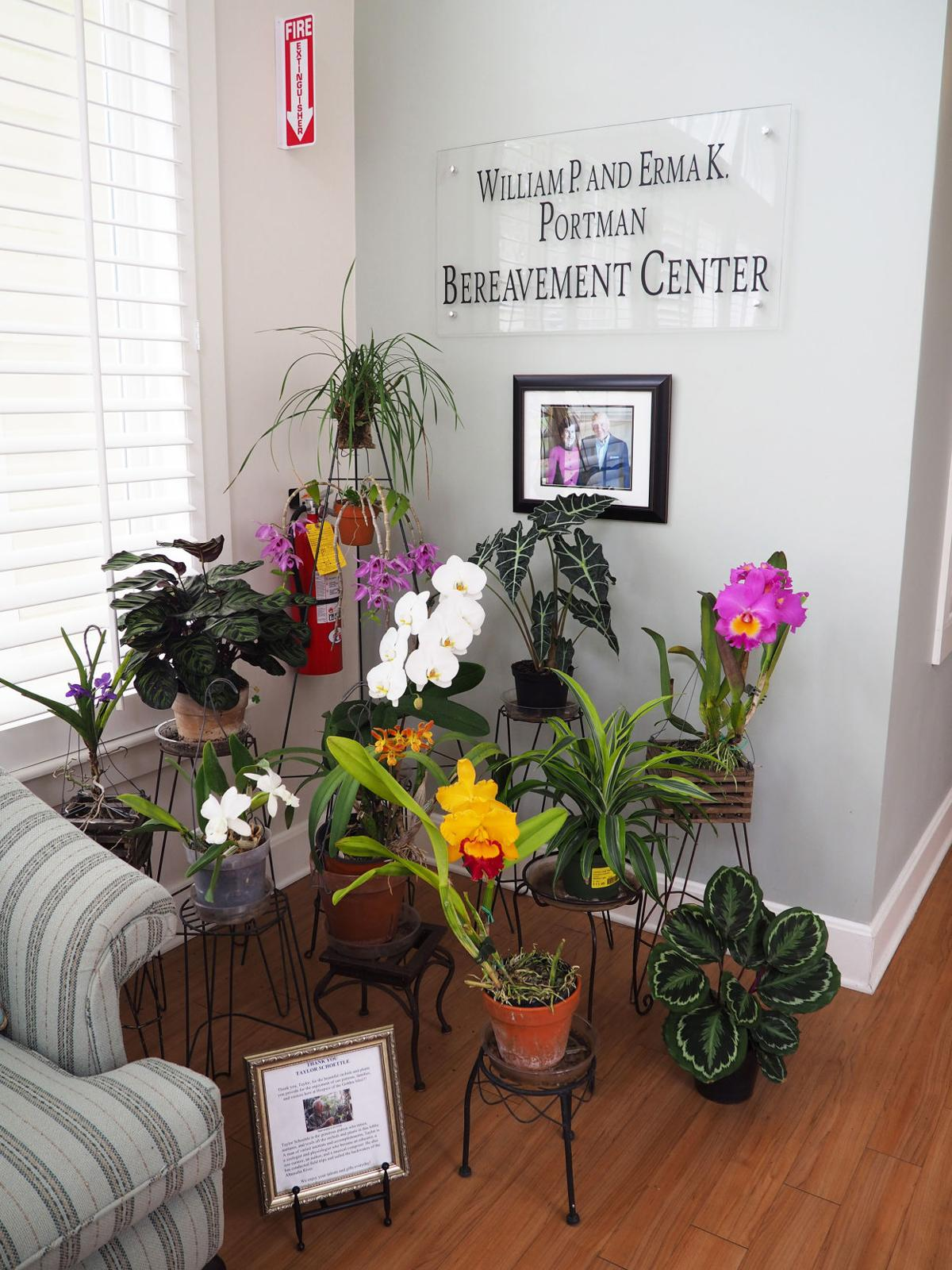 Orchid_group_at_hospice_2.JPG