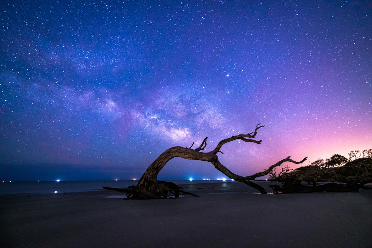 062920_John Krivec Driftwood Milky Way Edits Curve  300DPI-1 (1)