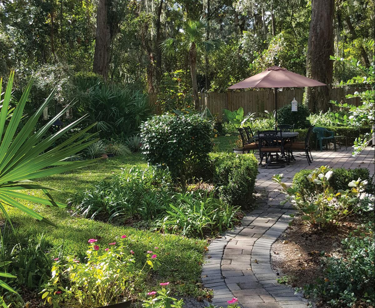 A walk through paradise features - When you walk through the garden ...