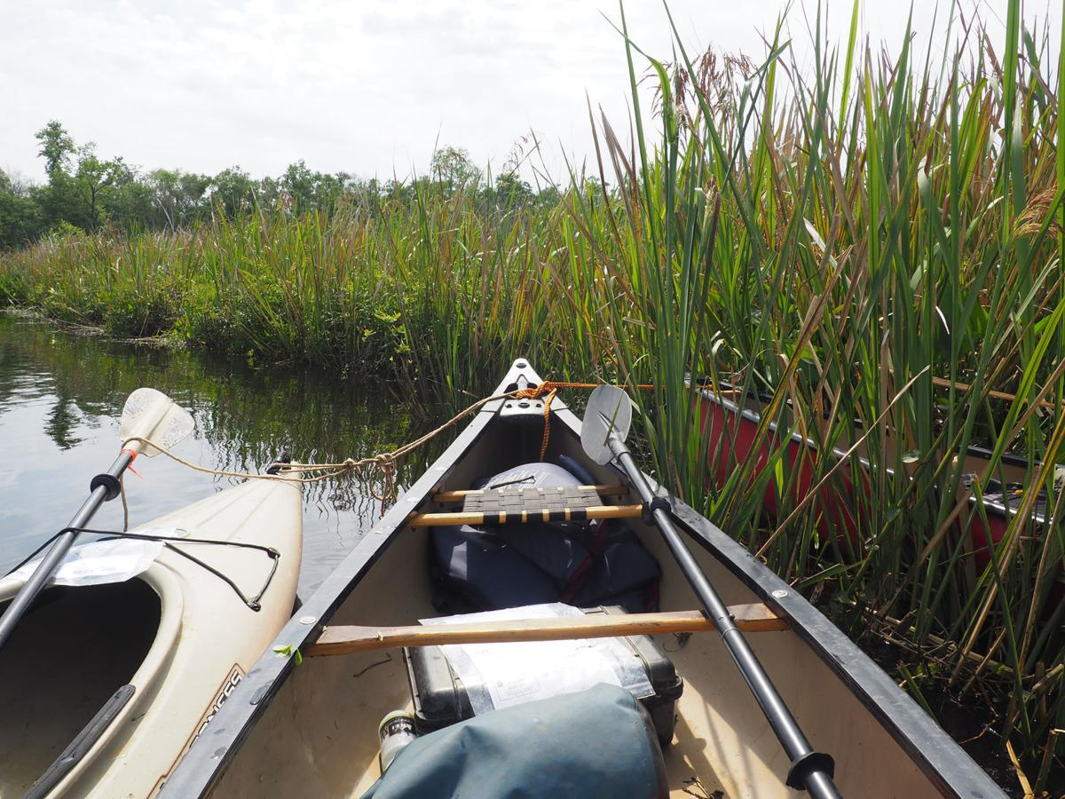 Navigating the Blackwater of the Satilla