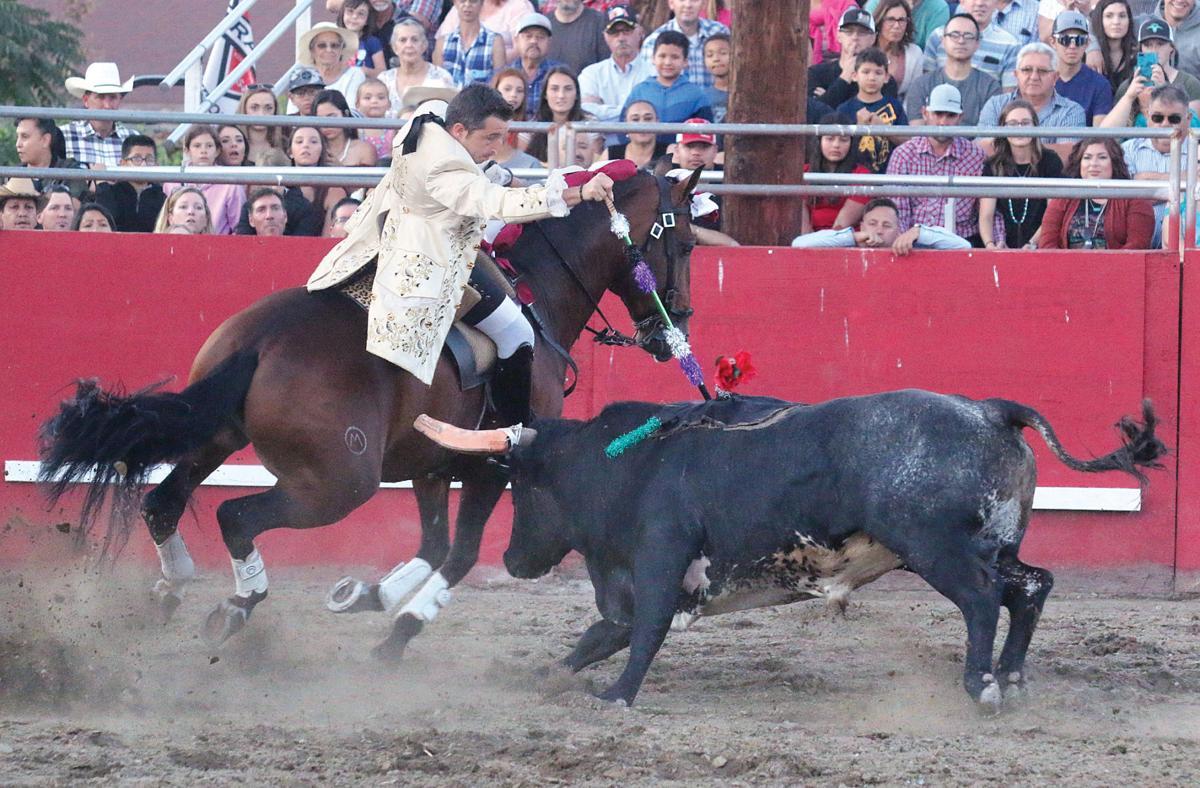 Bloodless bullfights