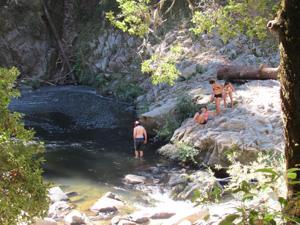 San Jose Visitor Falls To His Death In Garden Of Eden