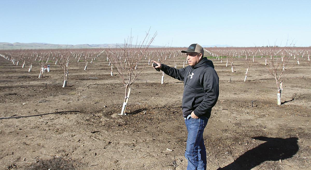 Irrigation season begins