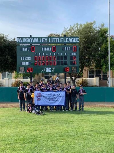 Scotts Valley Little League Majors Wins District 39 Championship