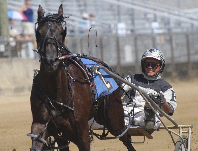 ELKHART COUNTY 4-H FAIR: Star harness racer makes appearance