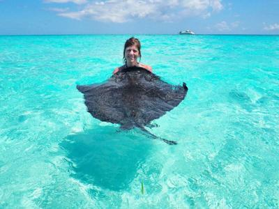 NOT THAT YOU ASKED, BUT ...: Adventures in Grand Cayman include kissing stingrays