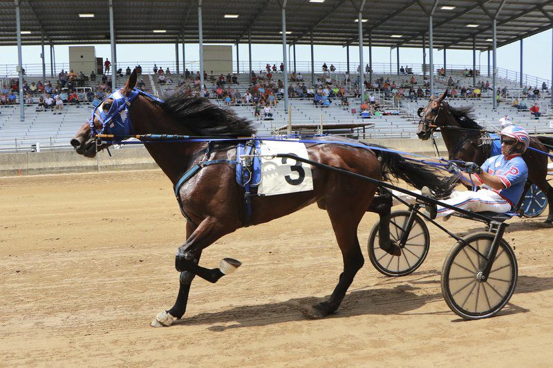 ELKHART COUNTY 4-H FAIR: Brewster honored at harness racing