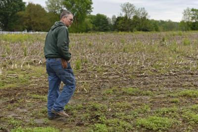 Governor requests ag disaster designation