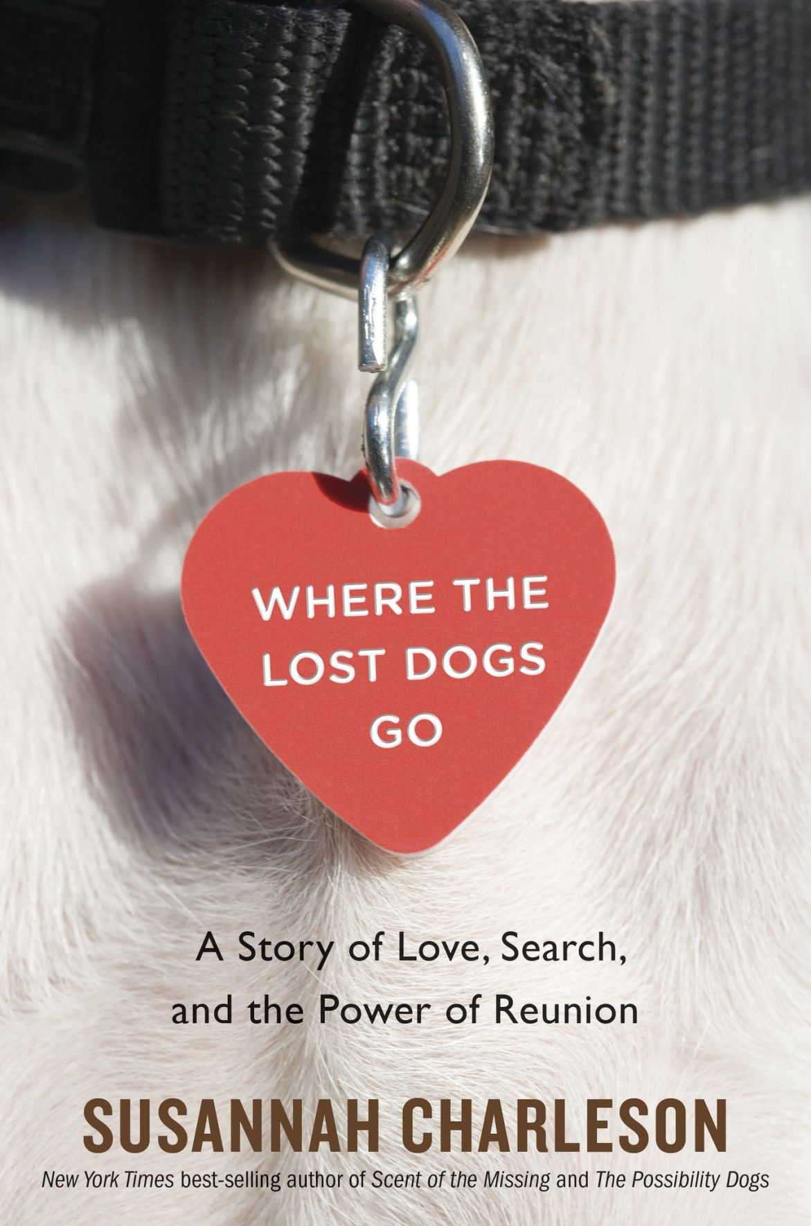 20190902-nws-bookwormsez Where the Lost Dogs Go.jpg