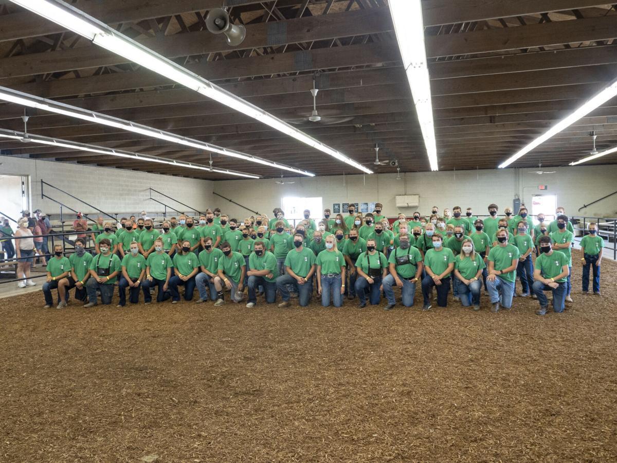 Elkhart County 4-H Dairy Feeder Showcase 2020