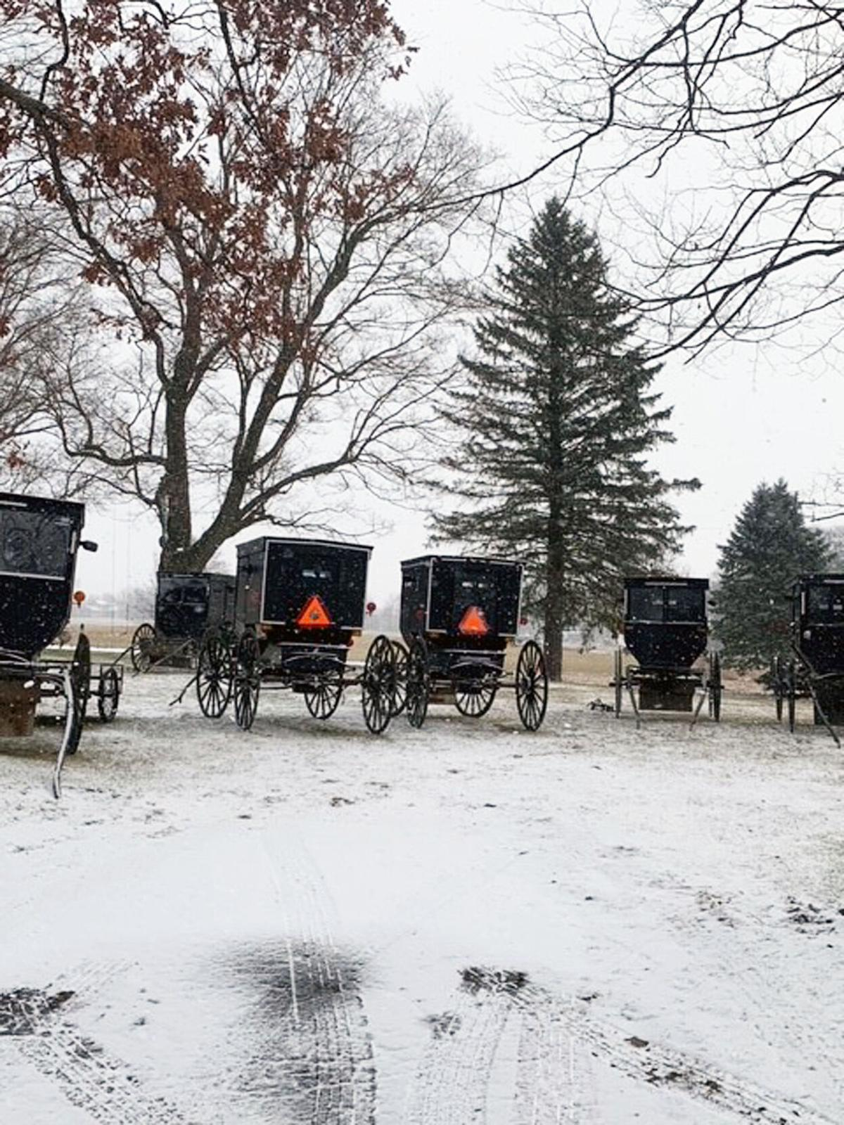 Lovina's Amish Kitchen