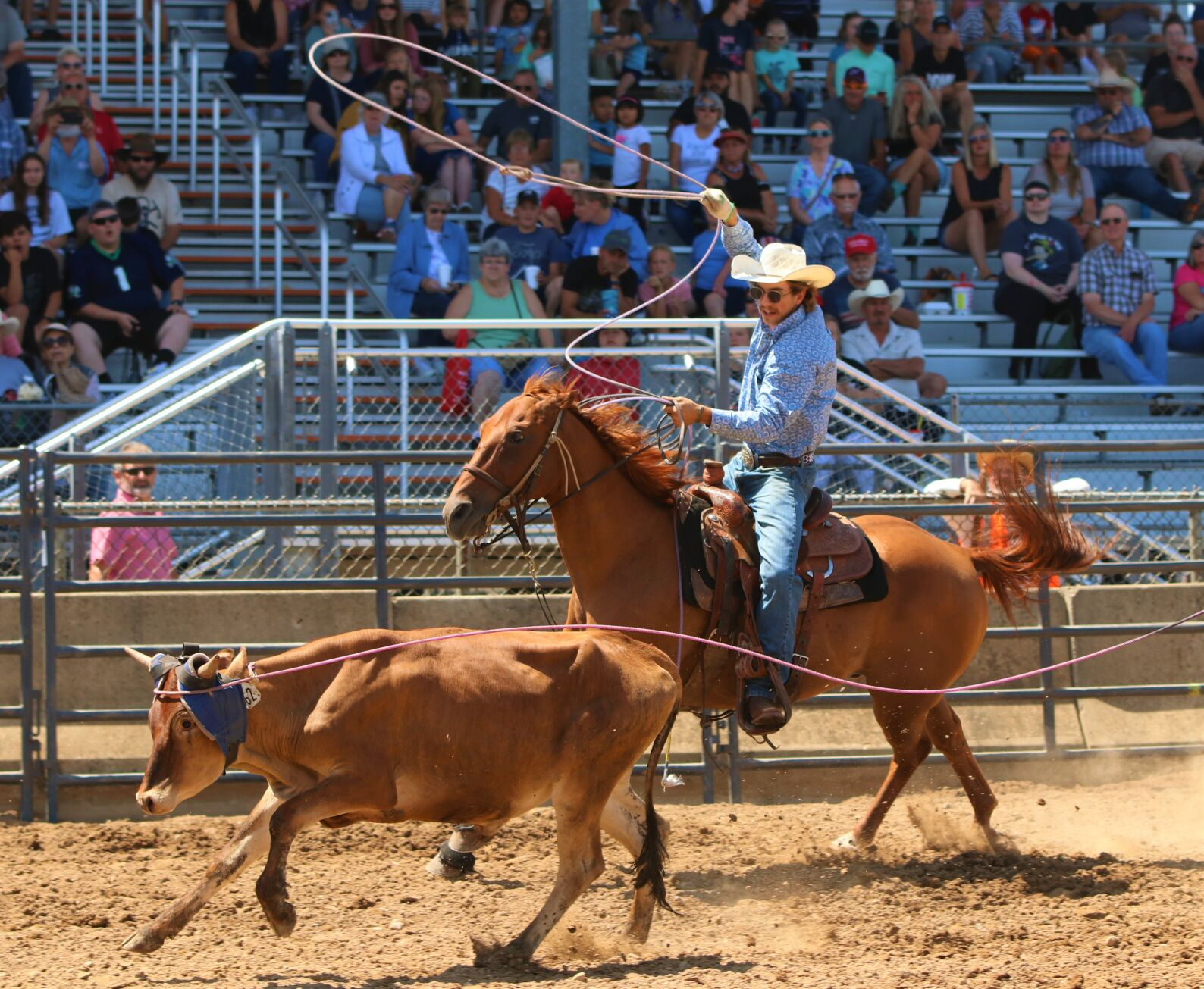 ELKHART COUNTY FAIR: Hawkins takes part in hometown rodeo