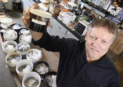 Purdue ready to plant legal hemp