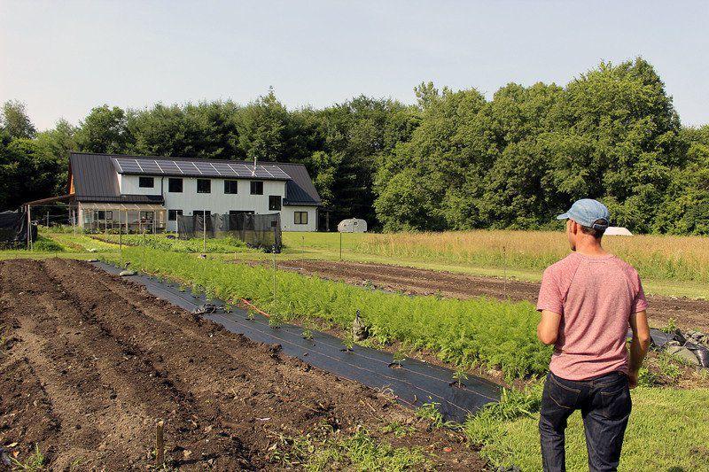 THANK A FARMER: Tiny farm serves loyal, local market
