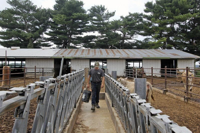 SPOTLIGHT ON LAGRANGE: Young farmer sees opportunities in dairy industry