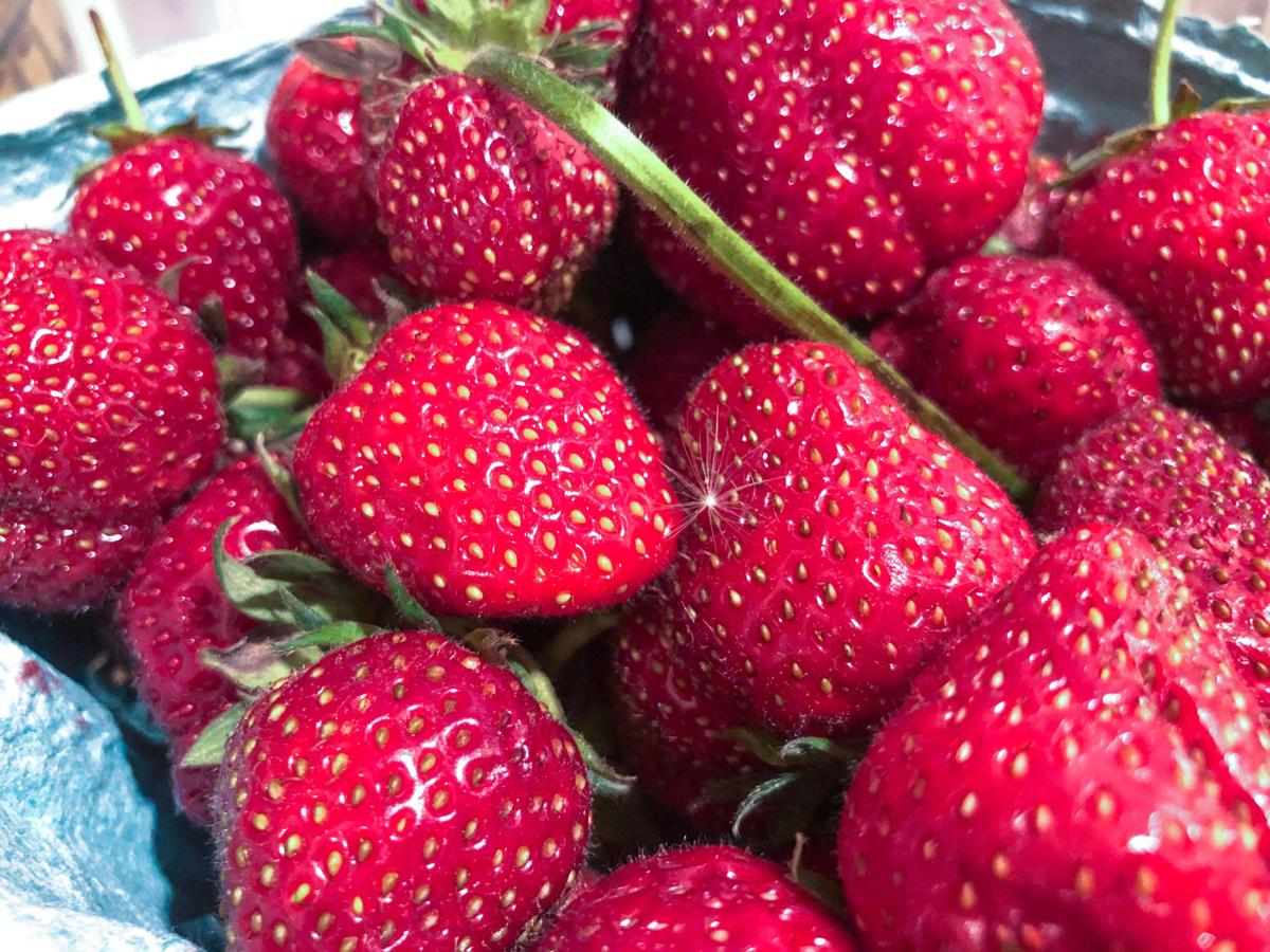 strawberry.dalk.jpg