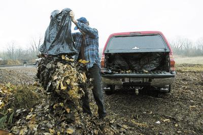 Goshen residents have options for yard waste | Local News