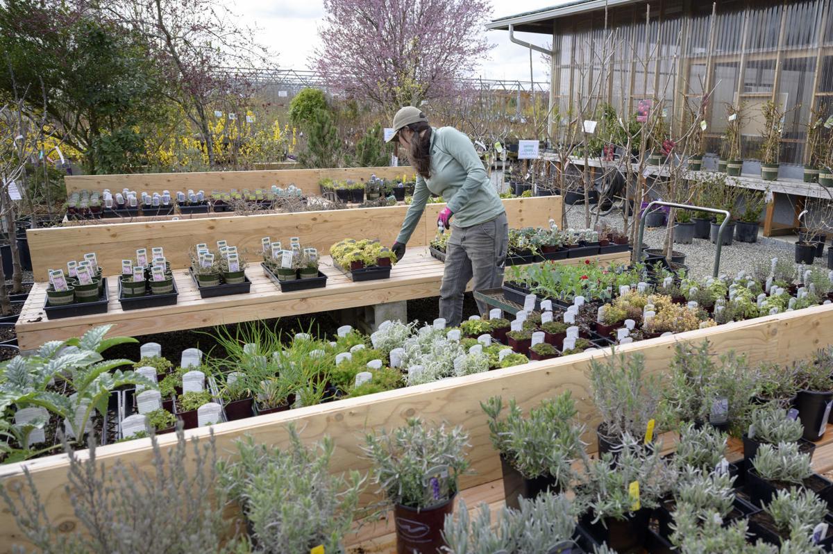 Azusa Farm and Gardens