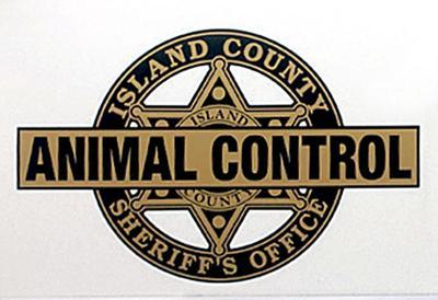 Island County Camano Island Animal Control logo