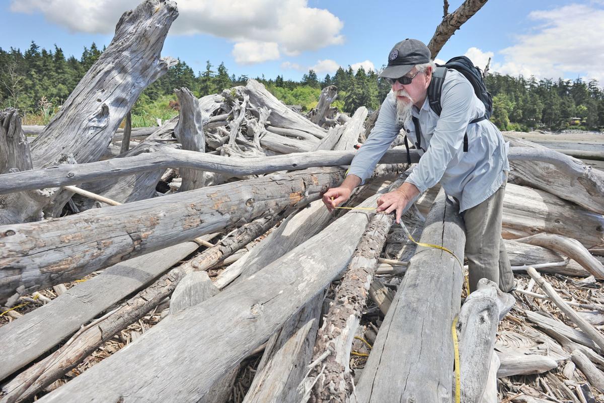 Beach restoration planned for Kukutali Preserve