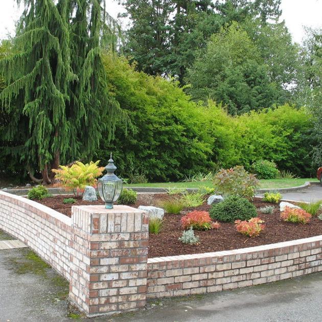 Ask the Master Gardener: A drought-tolerant garden — an approach for ...
