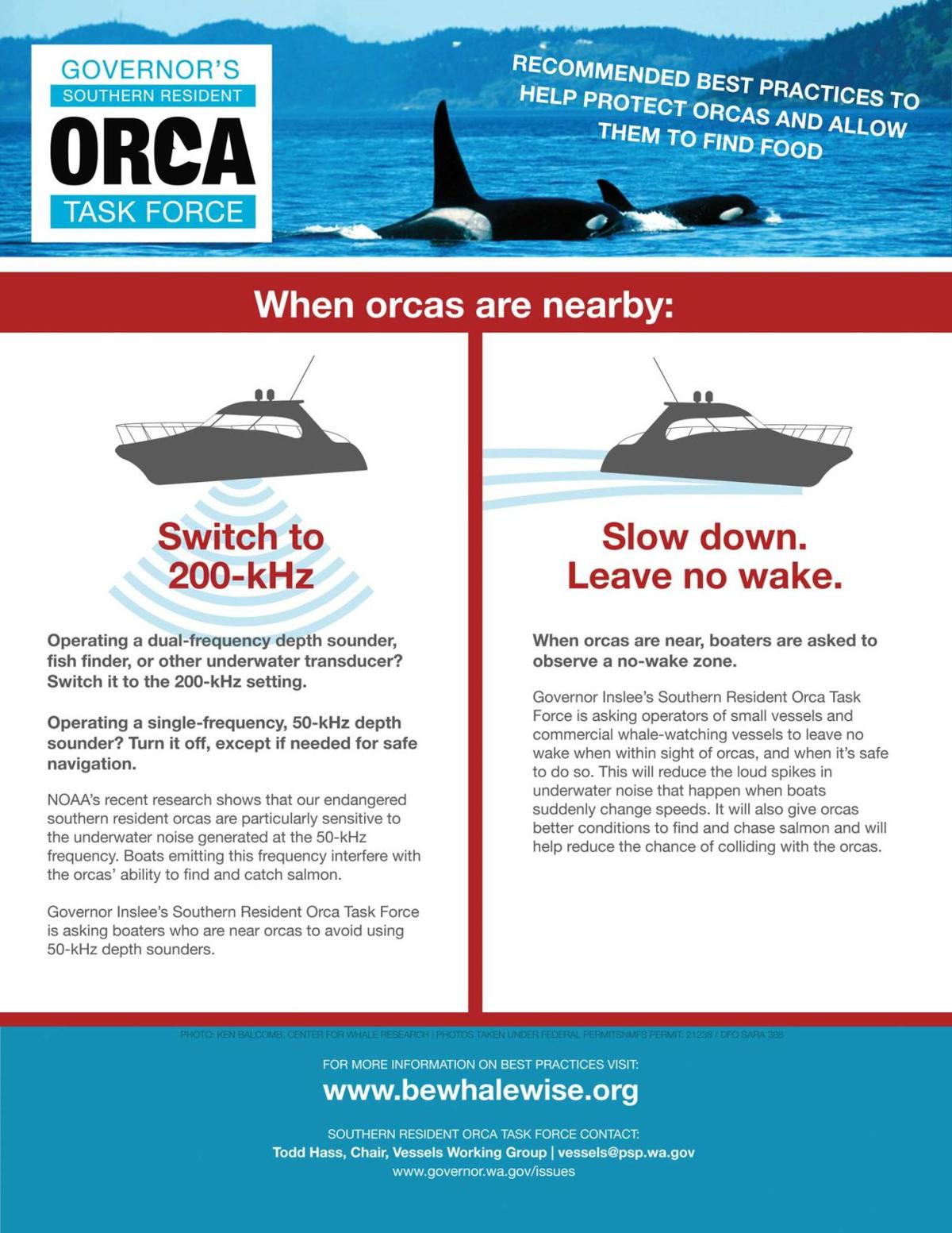Boaters asked to help reduce noise impacts on orcas | News