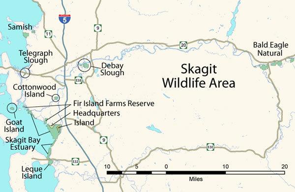 Skagit Wildlife Area - SCN