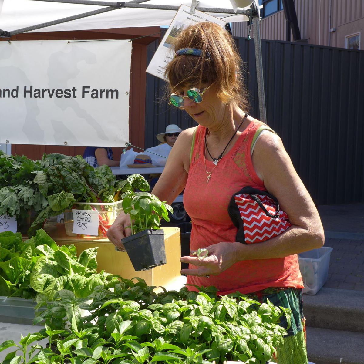 C FM Denise Kelsey buys plants