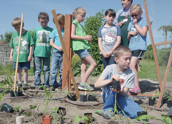 Kids learn about gardening, bugs and flowers at WSU Extension