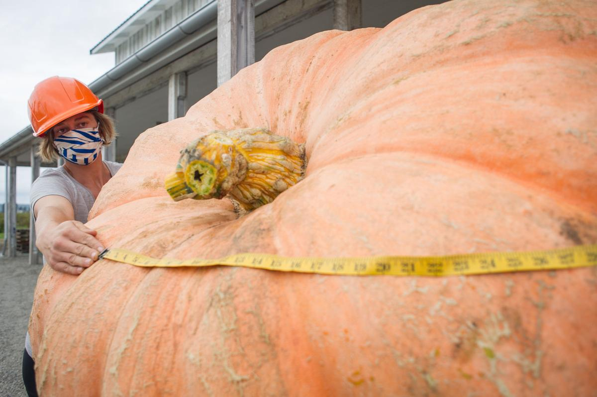 Pumpkin Weigh-Off 02