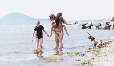 Annual report highlights Bay View beach pollution