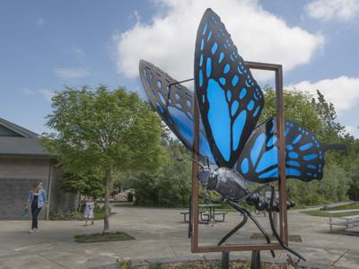 Butterfly sculpture at Kiwanis Park