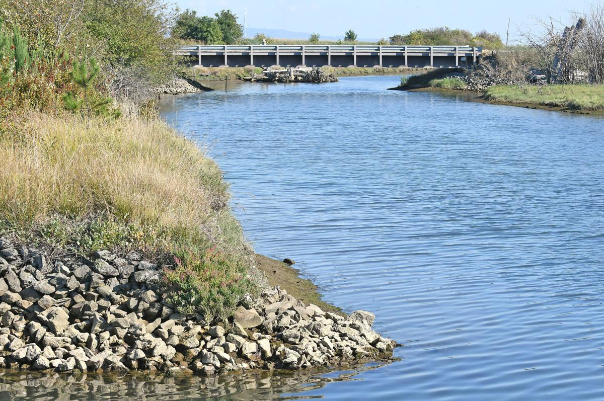 Tribe planning dike setback along Swinomish Channel