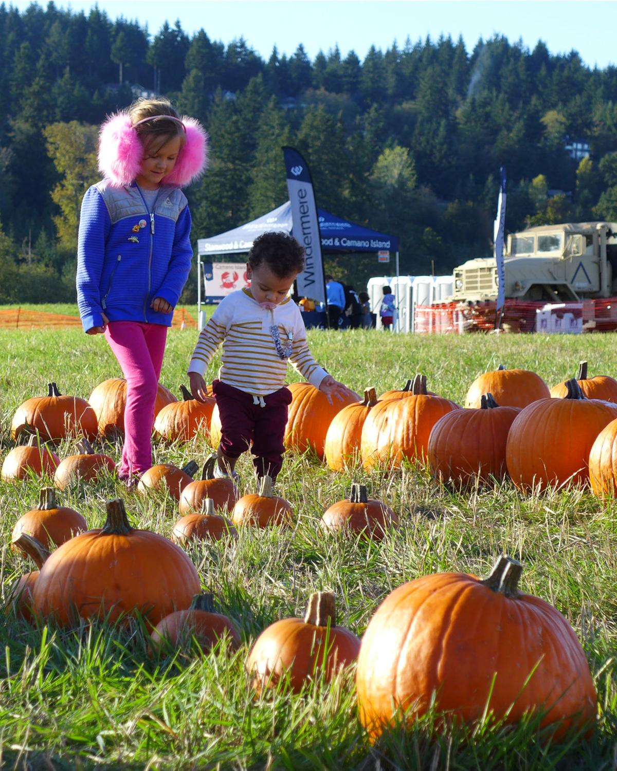 Pumpkin Project 2019-10-05 Muffs and toddler in maze