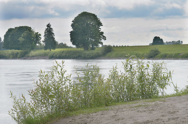 Treading water: Without funding, Skagit River GI study's future unclear