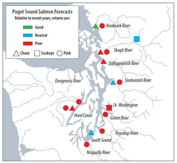 Pink salmon fishing closes in Skagit Bay area