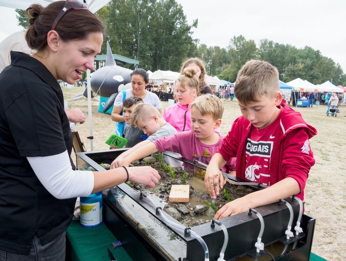Skagit River Salmon Festival