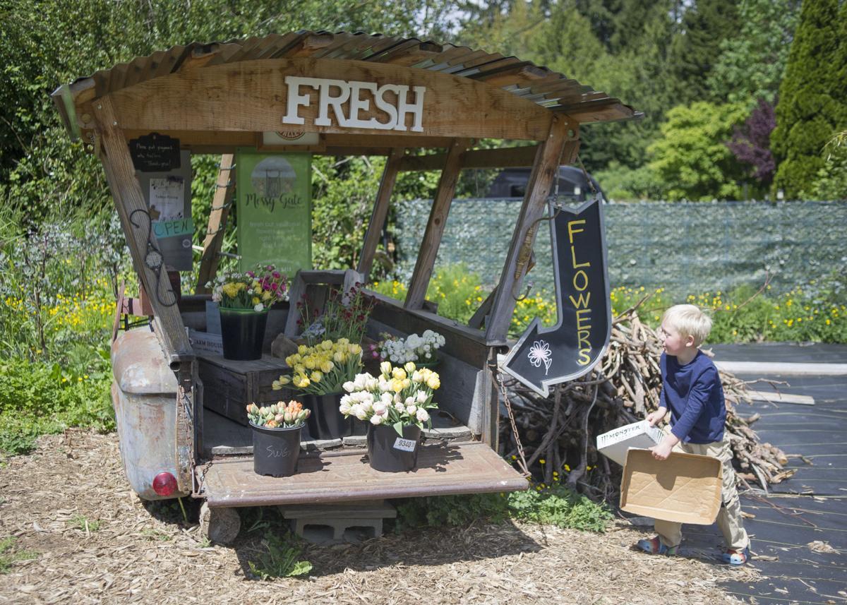 svh-202105xx-news-Flower-Farms-2.jpg