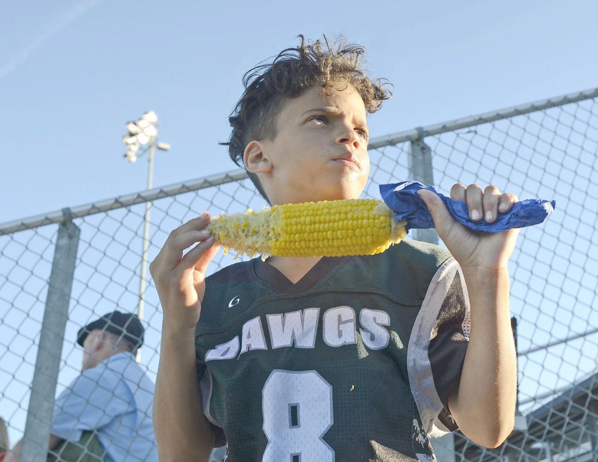 Fan of the corn
