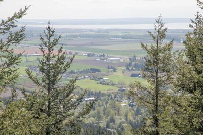 Skagit County farms