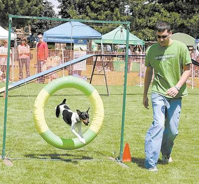 New events at Bark in the Park fest