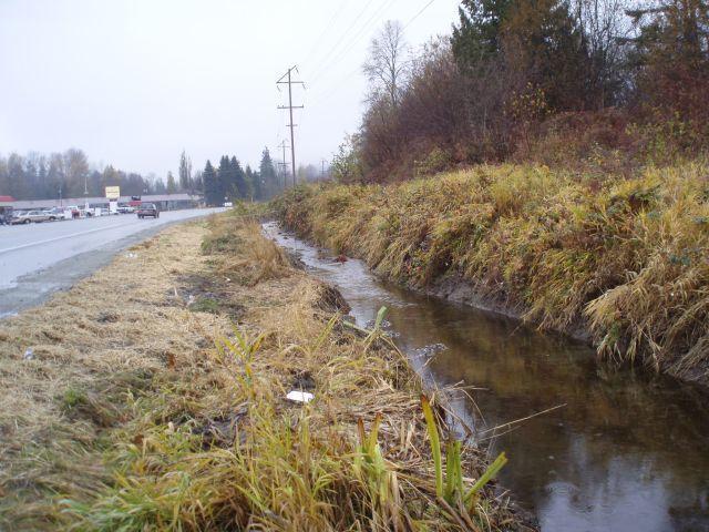 Fish Creek.jpg