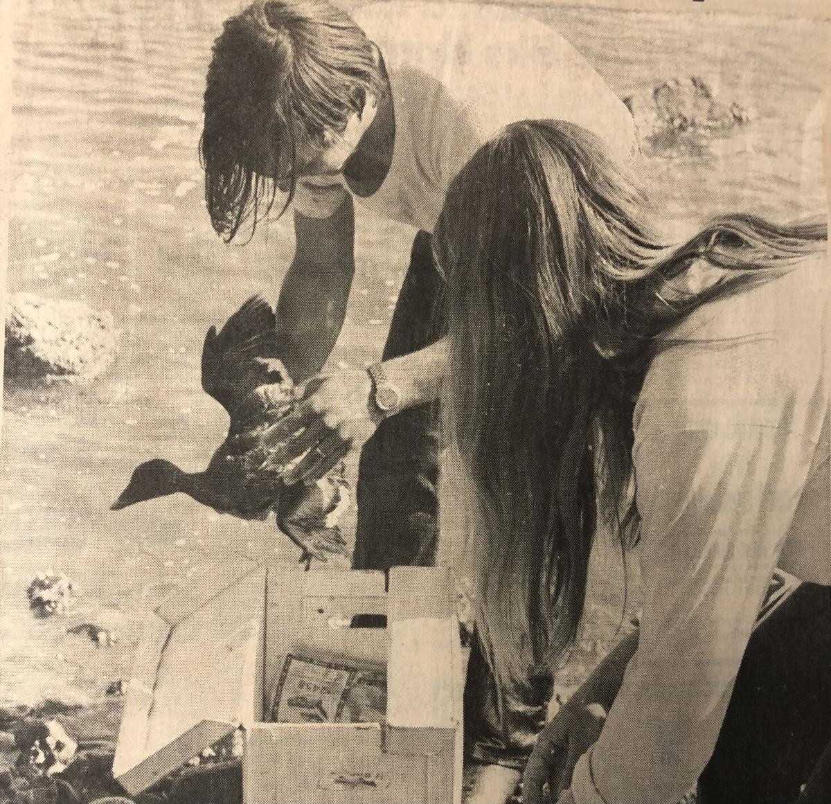 Guemes Island Oil Spill 1971