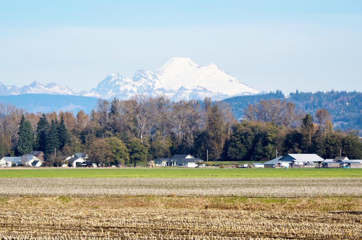 Mount Baker is an active volcano